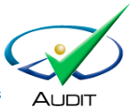 audit_logo_caseware